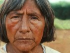 Guarani Survival Fonds